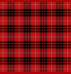 munro tartan scottish cage background vector image