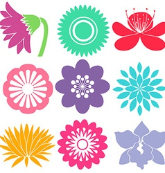 Nine floral templates vector image