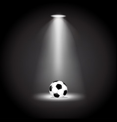 soccer ball under the lights vector image