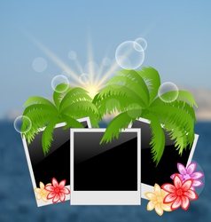 set photo frame with palms flowers on blurred vector image vector image