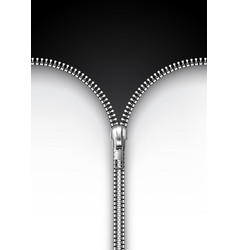 realistic metal zipper opened and closed position vector image vector image