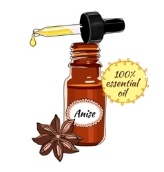 Bottle of Anise essential oil with dropper vector image