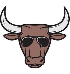 Bull head with aviator sunglasses color vector