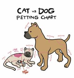 Cat and dog petting chart cartoon vector