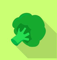 green broccoli icon flat style vector image