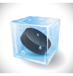 Ice cube with hockey puck vector