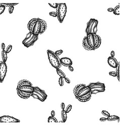 seamless pattern with black and white cactus vector image