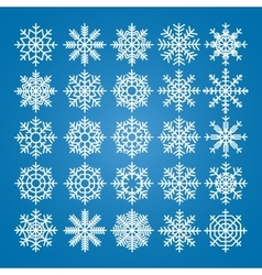 Snowflakes set pack of snowflakes vector