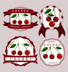 the theme cherry vector image