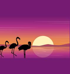 Art flamingo silhouette scene at sunset vector