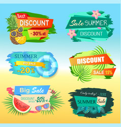 best discount labels with pineapple summer sale vector image