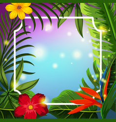 border template with tropical flowers vector image