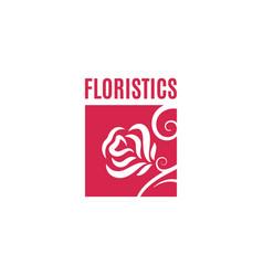 flower rose logo flower shop concept design vector image