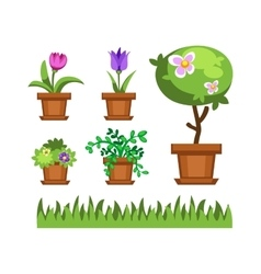 Garden tree and flowers vector image