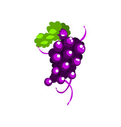 happy grape cartoon character girl in funny fruit vector image