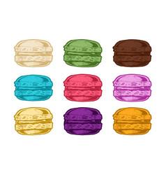 macarons vector image