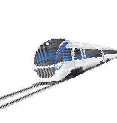 Modern high speed train isolated on white vector image