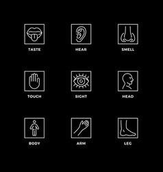 Set icons for senses vector