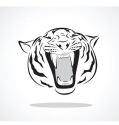 tiger vector image