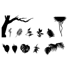 black jungle plants silhouettes set vector image vector image