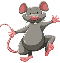 Gray rat vector