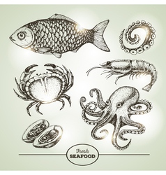 Hand drawing sketch set of seafood vector image