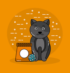 pet cat sitting with bag food and ball toy vector image