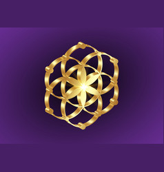 Seed life symbol sacred geometry 3d flower sign vector