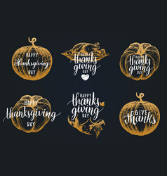 thanksgiving lettering with sketches vector image