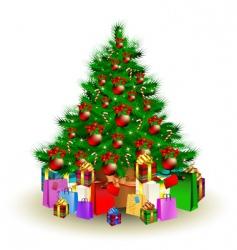 Christmas fir vector image vector image