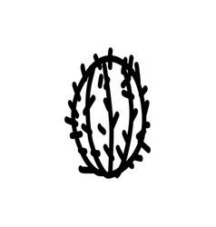 cactus hand drawn icon vector image