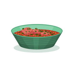 Meat dish with sauce traditional indian cuisine vector
