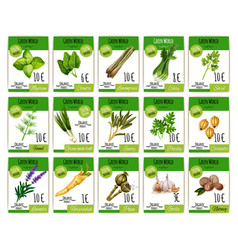 price cards set for spices and herbs vector image