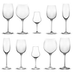 Set empty wine glasses wine glass vector