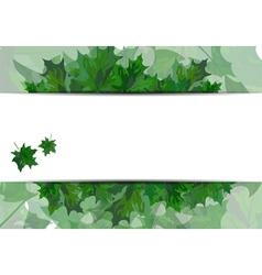 Summer maple leaves vector image