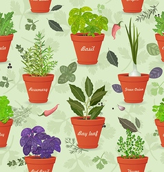 vintage seamless texture with herbs planted in vector image vector image
