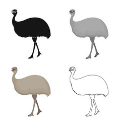 bird ostrich emuafrican wild ostrich single icon vector image vector image