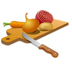 cooking vegetables vector image