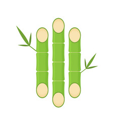 flat bamboo icon vector image