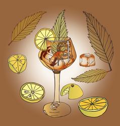 Glass wine glass leg lemons slices leaves greenery vector