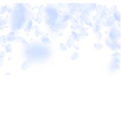 Light blue flower petals falling down pleasant ro vector