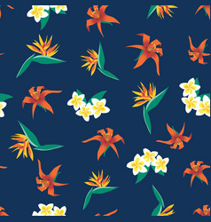 plumeria lilies and bird paradise flowers vector image