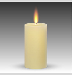 realistic paraffin burning candle vector image