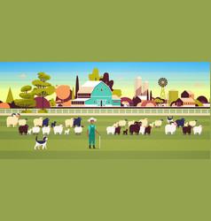 Shepherd with stick and dogs herding flock vector