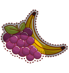 Sticker grape and babana fruit icon vector