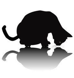 black cat silhouette with shadow vector image