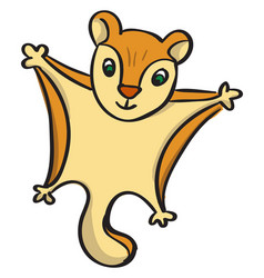 Flying squirrel on white background vector