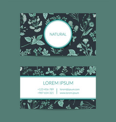 Hand drawn medical herbs business card vector