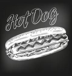 hot dog fast food hand drawn vector image