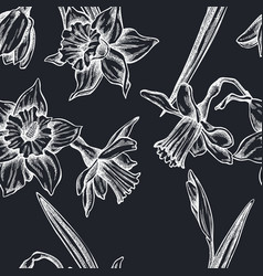 seamless pattern with hand drawn chalk daffodil vector image
